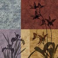 Floral Refrain II Fine-Art Print