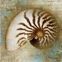Nautical Beauty Fine-Art Print