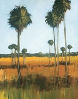 Tall Palms I Fine-Art Print