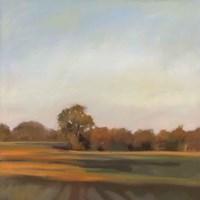 Harvest Fields Fine-Art Print