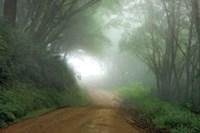 Road to Nowhere Fine-Art Print