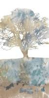 Water Tree II Fine-Art Print