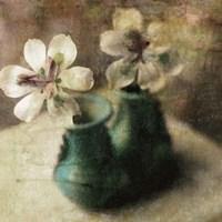 Nature's Blossoms IV Fine-Art Print
