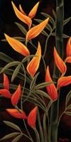 Sunburst Blossoms Fine-Art Print