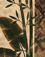 Temperate Flora Fine-Art Print