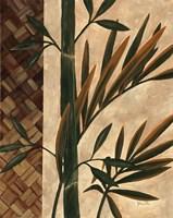 Palm Breeze Fine-Art Print