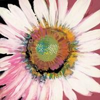Sunshine Flower I Fine-Art Print