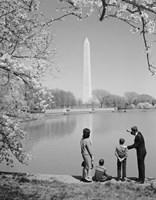 Family At Washington Monument Amid Cherry Blossoms Fine-Art Print