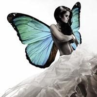 Winged Beauty #1 Fine-Art Print