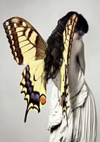 Winged Beauty #3 Fine-Art Print