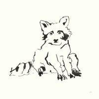 Line Raccoon Fine-Art Print