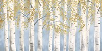 Fresh Forest Light Blue Gold Fine-Art Print