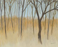 Misty Woods Fine-Art Print