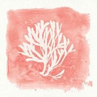 Water Coral Cove III Fine-Art Print
