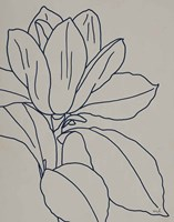 Magnolia Line Drawing v2 Gray Crop Fine-Art Print