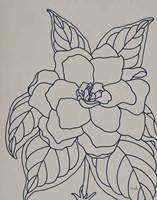 Gardenia Line Drawing Gray Crop Fine-Art Print