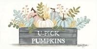 U-Pick Pumpkins Fine-Art Print