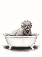 Bison in Tub Fine-Art Print