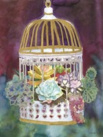 Succulent Bird House Fine-Art Print
