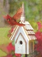 Cardinal Bird House Fine-Art Print