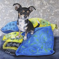 Chihuahua Pillows II Fine-Art Print