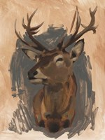 Red Deer Stag II Fine-Art Print