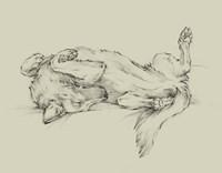 Dog Tired I Fine-Art Print