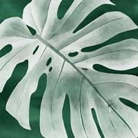 Velvet Palm IV Fine-Art Print