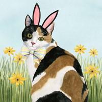 Easter Cats I Fine-Art Print