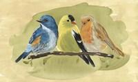 Bird Perch I Fine-Art Print