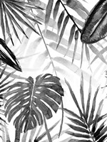 Jungle Walk II Fine-Art Print