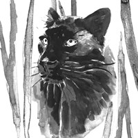 Still Cat I Fine-Art Print