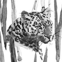 Still Cat II Fine-Art Print