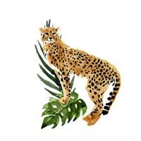 Cheetah Outlook II Fine-Art Print
