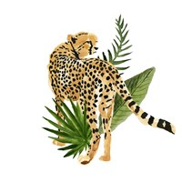 Cheetah Outlook III Fine-Art Print