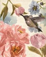 Nectar's Sip II Fine-Art Print