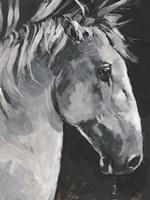 Tribeca Horse I Fine-Art Print
