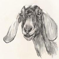 Farm Portrait I Fine-Art Print