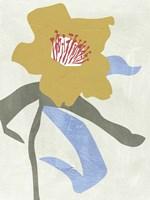 Lenten Rose I Fine-Art Print