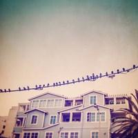 Birds on Wires I Fine-Art Print