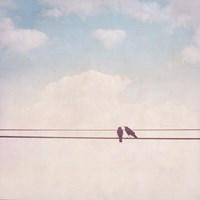 Birds on Wires II Fine-Art Print