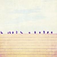 Birds on Wires III Fine-Art Print