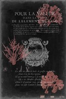 Pour La Mer I Fine-Art Print