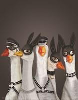 Geese Guys Fine-Art Print