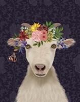 Goat Bohemian 1 Fine-Art Print