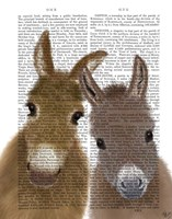 Donkey Duo, Looking at You Book Print Fine-Art Print