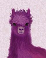 Llama Purple Meadow Flowers Fine-Art Print