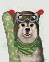 Husky Snowboard Fine-Art Print