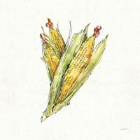Veggie Market III Corn Fine-Art Print