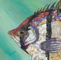 Angelfish Fine-Art Print